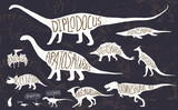Set of silhouettes of dinosaurs and fossils. Hand drawn vector illustration with decorative lettering of dinosaurs names. Man and children, comparison of realistic size, separated elements.