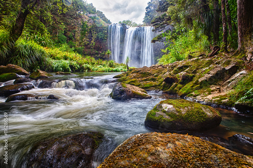 waterfall in the bush, New Zealand - 116286569