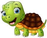 Happy turtle cartoon isolated on white background