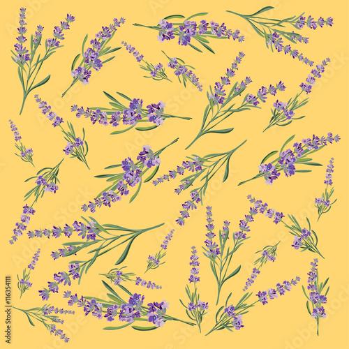 Naklejka Background with flower frame Lavender for Invitation card