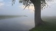 Mysterious landscape with dense fog. Morning at small river.