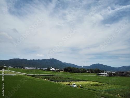 糸島の風景