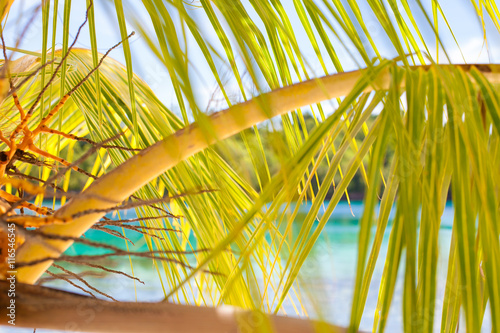 Photo Untouched Tropical Beach in Bali Island. Horizontal Picture. Closeup.