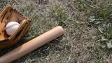 Bóng chày ಬೇಸ್ಬಾಲ್বে সবল Բեյսբոլ Honkbal Бейсбол Basebol 野球 Bejzbal Béisbol Beisebol Hafnabolti 棒球 Pelota 야구 base बेसबॉल בייסבול Baseball كرة القاعدة Beyzbol