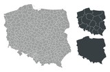 Fototapety Detalied Poland map