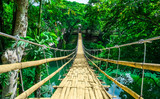 Fototapety Bamboo hanging bridge over river in tropical forest