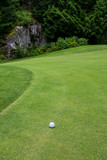 Golf ball on a green next to the fringe, with scenic background
