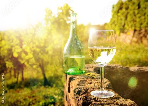 Leinwandbild Motiv Weißwein - Verkostung im Weinberg