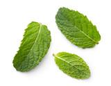 fresh green mint leaves - 116658386