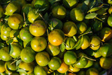 Basket with fresh vietnamese oranges