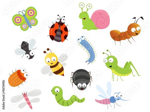 Zdjęcia na płótnie, fototapety, obrazy : Cute Bug Set