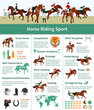 Horse Rising Infographics Wall Sticker