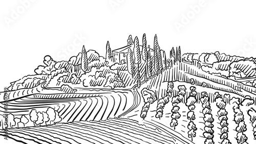 Naklejka Provence Landscape Apple Plant and Vineyard