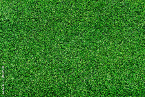 real green grass background - 116833188