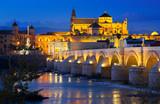 Mosque of Cordoba and Roman bridge in night