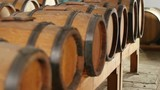 dolly shot of balsamic vinegar barrels in row in old winery where wine ages to become vinegar
