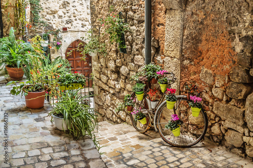 Fototapety, obrazy : Narrow cobbled street with flowers in the old village Tourrettes