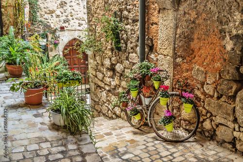 Zdjęcia na płótnie, fototapety na wymiar, obrazy na ścianę : Narrow cobbled street with flowers in the old village Tourrettes