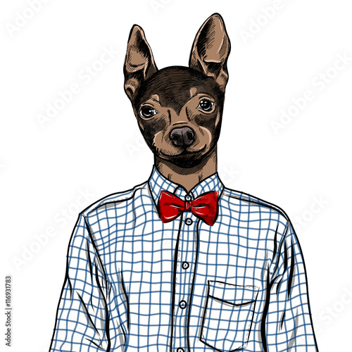 hand-drawn-fashion-illustration-wystrojony-w-gore-angielski-toy-terrier-w-kolorach-wektor