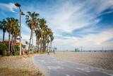Bike path along the beach in Venice Beach, Los Angeles, Californ - 116977370