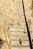 footprint on wood