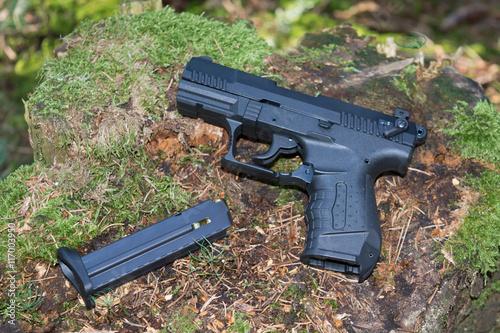Poster Pistole
