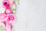 Pink and white ranunculus flowers - 117028739