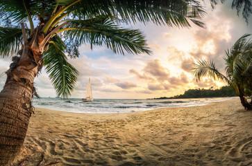 Tropischer Strand bei Sonnenuntergang, ein Paradies mit Sand und Palmen