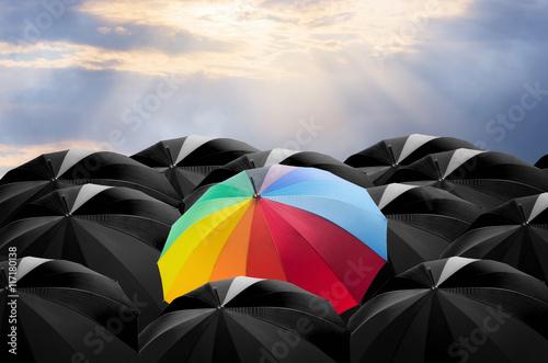 Umbrella in Storm.