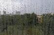 по�ле дожд�