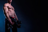 Torso of a Powerful Bodybuilder Holding Dumbbells With Copy Space