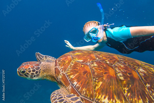 Poster A young woman snorkeler swims with sea turtle Caretta in blue waters of the popular Similan Islands in Thailand, one of the tourist attraction of the Andaman Sea