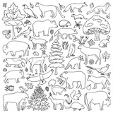Doodle Forest Animals
