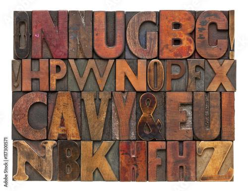 antique lettepress wood type alphabet Poster