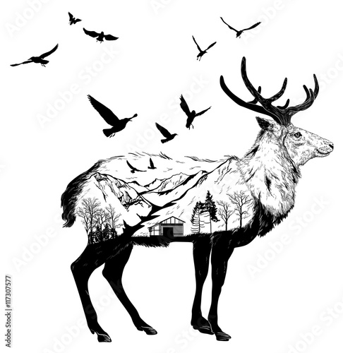 Hand drawn Deer for your design, wildlife concept - 117307577
