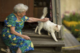 An elderly woman with a cat sitting on the porch of the house.