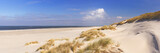 Endless beach on the island of Terschelling in The Netherlands - 117351376