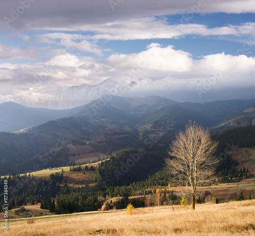 Poster Oceanië Autumn landscape with a mountain village