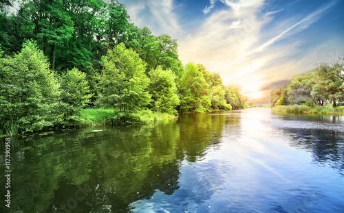 Przyroda otaczająca rzekę