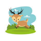 Woodland animal concept represented by cute reindeer cartoon icon. Colorfull and flat illustration.