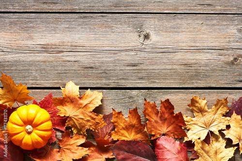 Fototapeta Autumn leaves and pumpkin