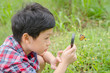 Young asian boy using magnifying glass to observing butterfly in