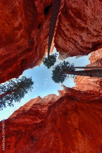 Fotobehang Rood paars Bryce Canyon National Park