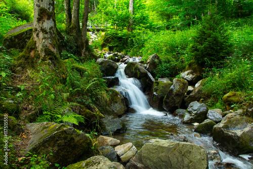 Kleiner Wasserfall  - 117515555