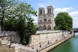 Notre Dame along the Seine river in Paris, France