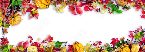 Panel Szklany Colorful Fall Leaves On White - Autumn Decorative Border