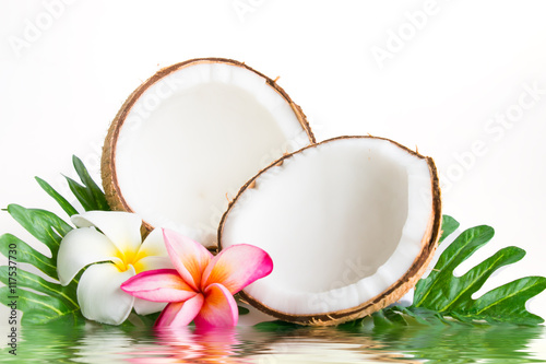 Fotobehang Plumeria Coconut with leaves and flower on a white background..