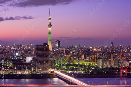 Poster Tokyo, Japan Skyline