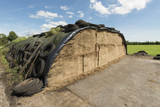 Ensilage on a dairy farm.