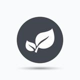 Leaf icon. Fresh organic product sign.